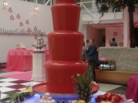 chocolate-fountains-10