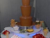 chocolate-fountains-14
