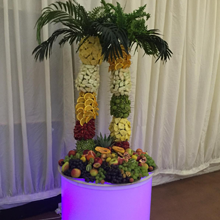Fruit Palm Trees Hire